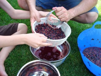 grapes - pouring 2