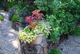 Freeland Tanner-Garden Designer-Napa-Garden Decor-Bespoke Garden Decor-succulents-container gardening-napa valley