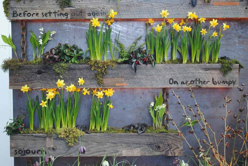 living walls at northwest flower and garden show