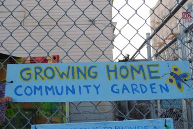 Living Walls In A San Francisco Community Garden Harmony