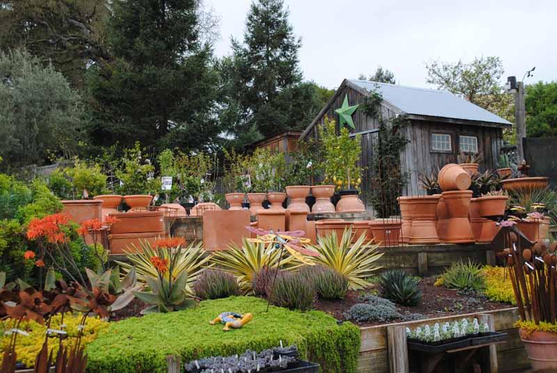 Cottage Gardens In Petaluma U2013 Garden Upu0027s Next Stop!