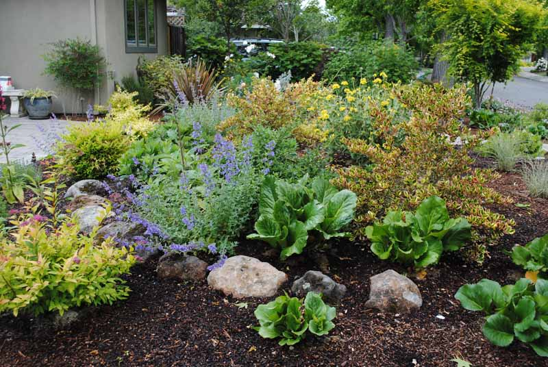 Front yard landscaping ideas without grass for No maintenance yard ideas