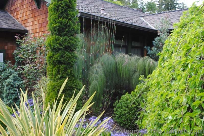 Garden Designers in 1990 the duchess of westminster commissioned garden designer arabella lennox boyd to create the Garden Designers Roundtable Using Texture In The Garden