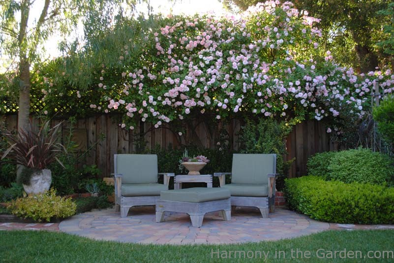 Landscaping For Privacy Book Review Harmony In The Garden