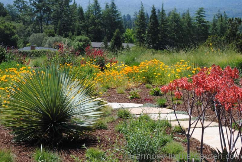 Garden Designers Roundtable: Designing With Natives