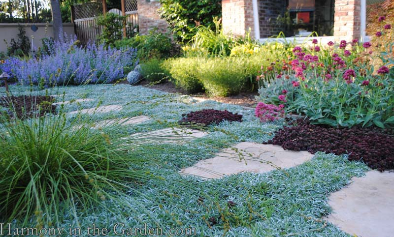 Shades of Gray in a No-Lawn Front Garden | Harmony in the ...