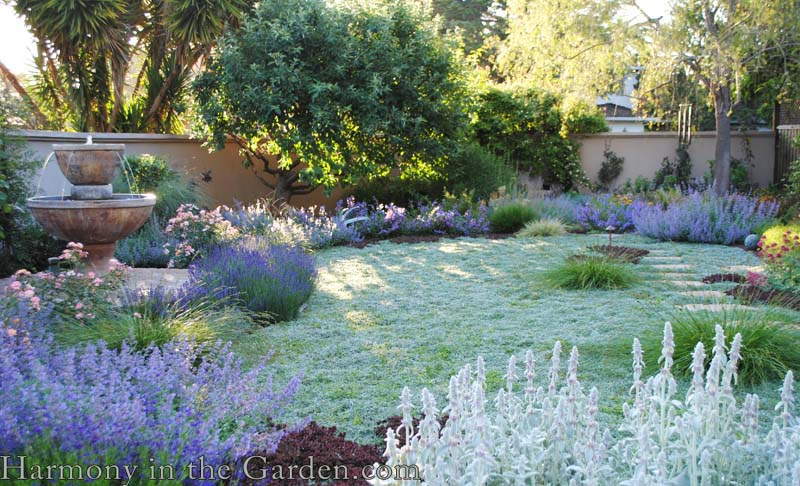 no-lawn front garden