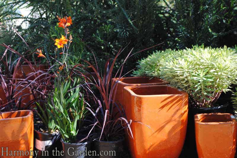 Pots from Flora Grubb