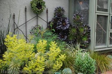 textural garden bed