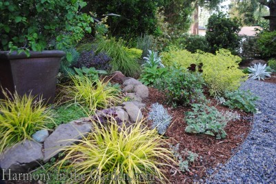 replace lawn with a garden