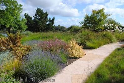 Hillside Meadow Garden copy
