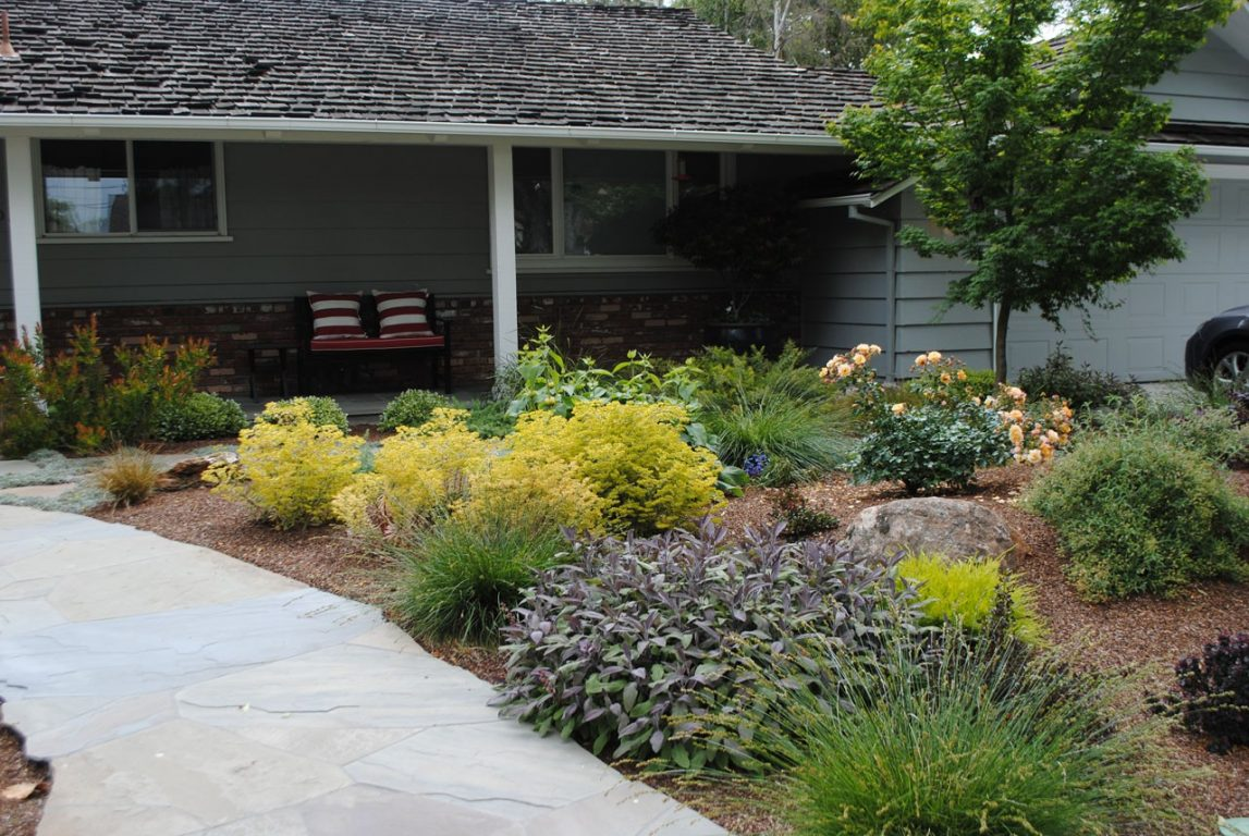 Lawn Free And Low Maintenance Harmony In The Garden