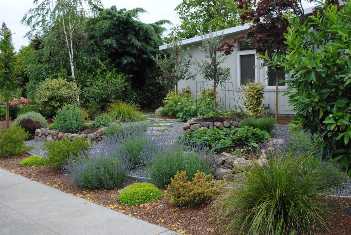 an edible front yard garden harmony in the garden