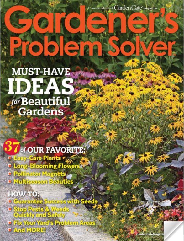 2018-Summer Garden's Problem Solver P1
