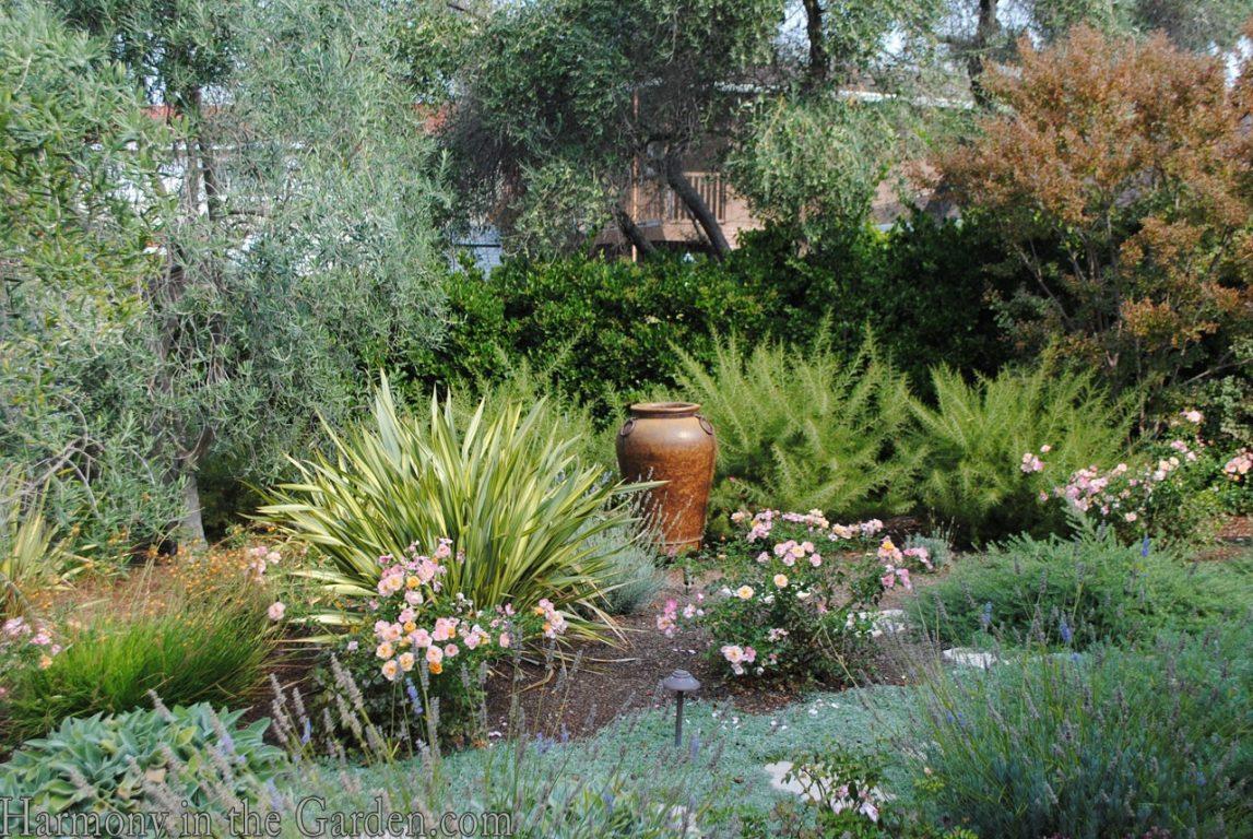 Mediterranean Garden Makeover-Northern California-Drought Tolerant Garden Design-Lawn Removal Ideas