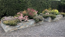 garden makeover-removing pools-raised vegetable bed-bluestone vegetable bed-northern california-pea gravel