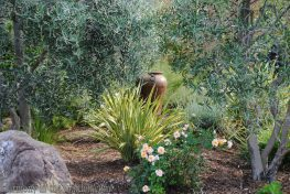 Mediterranean Garden Makeover-Northern California-Drought Tolerant Garden Design-Lawn Removal Ideas