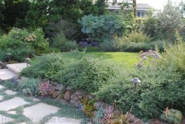 Tiers-Slopes-Northern California Gardens-draping-westringea-succulents
