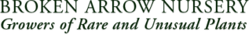 Broken Arrow Nursery logo