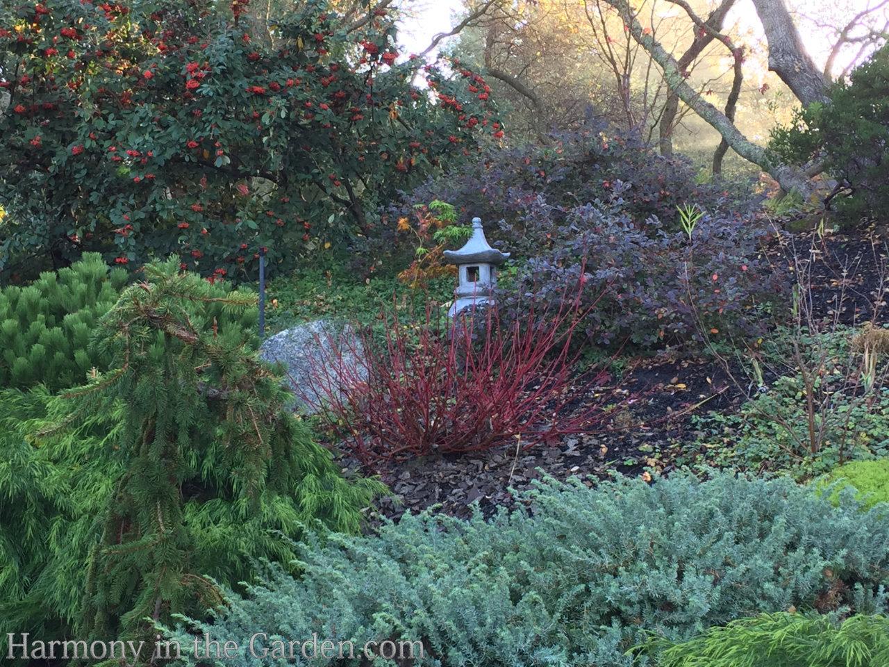 late winter garden