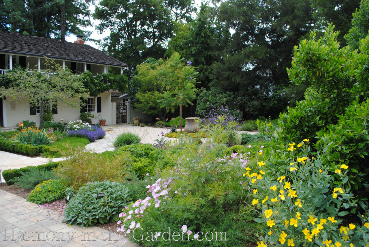 Guide for a Lawn Free Garden