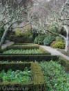 Festina Lente – Filoli's winter garden